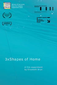 3xShapes of Home (2021)