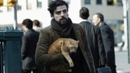 Inside Llewyn Davis en streaming