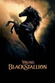 Poster for Young Black Stallion