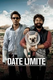Film Date limite  (Due Date) streaming VF gratuit complet