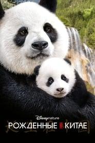 Смотреть Рождённые в Китае