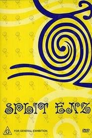 Split Enz 2002