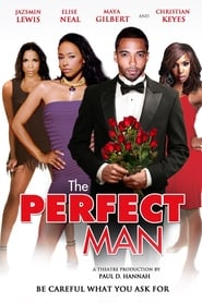 The Perfect Man 2011