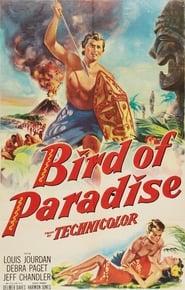 Affiche de Film Bird of Paradise