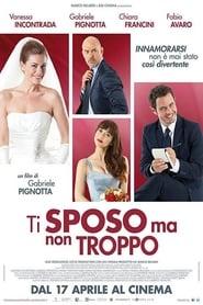 Poster Ti sposo ma non troppo 2014