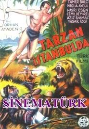 Tarzan in Istanbul plakat