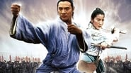 Maître Tai-Chi en streaming