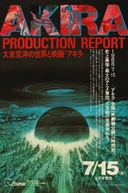 Akira - Production Report