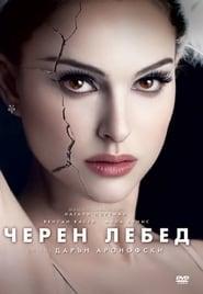 Черен лебед (2010)