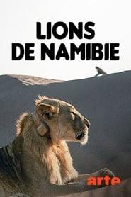 Lions de Namibie, les rois du désert