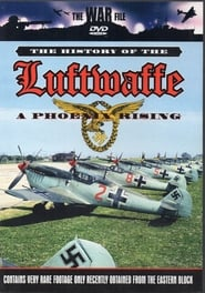 The History of the Luftwaffe – A Phoenix Rising