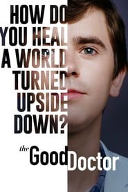 Poster The Good Doctor - Season 2 Episode 13 : Xin 2021