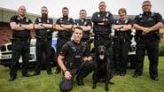Cops UK: Bodycam Squad saison 3 episode 3 streaming vf