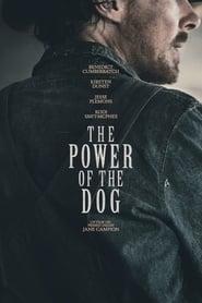 Il potere del cane (2021)