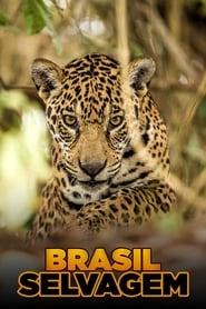 Brasil Selvagem 2016