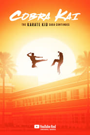 Cobra Kai Season 2 Complete (Hindi Dubbed)