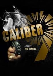 Caliber 9 2021