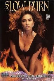 Slow burn 1991