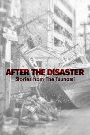 After The Disaster: Stories from The Tsunami (2020)