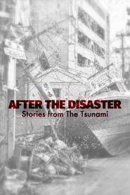 After The Disaster: Stories from The Tsunami