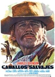 Poster Chino 1973