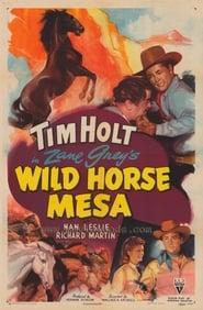 Wild Horse Mesa plakat