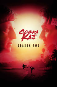 Cobra Kai: 2 Temporada