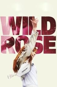 Poster Wild Rose 2019