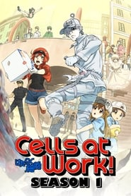 Cells at Work!: Season 1