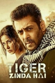 Tiger Zinda Hai 2017 Hindi Movie BluRay 400mb 480p 1.4GB 720p 5GB 12GB 17GB 1080p