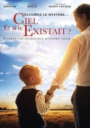 Et si le ciel existait ? streaming