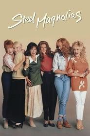 Poster Steel Magnolias 1989