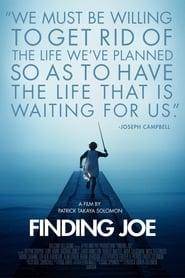 Finding Joe 2011