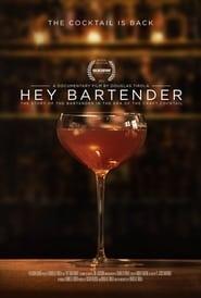 Hey Bartender (2013)