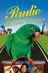Paulie, el loro bocazas Película Completa HD 720p [MEGA] [LATINO] 1998