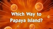 Dragon Ball Season 1 Episode 83 : Which Way to Papaya Island?