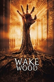 Poster for Wake Wood