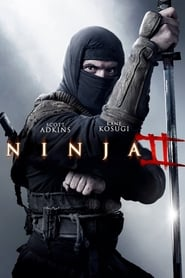 Poster Ninja: Shadow of a Tear 2013