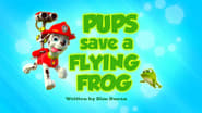 Pups Save a Flying Frog