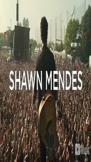 Shawn Mendes: Artist Spotlight Stories