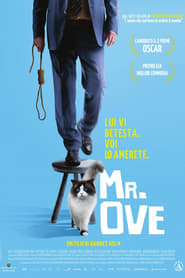 Guarda Mr. Ove Streaming su FilmPerTutti