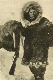 فيلم Captain F.E. Kleinschmidt's Arctic Hunt 1914 مترجم أون لاين بجودة عالية