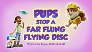 Pups Save a Far Flung Flying Disc