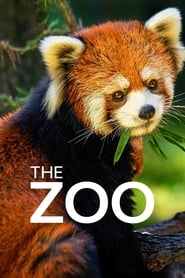 Poster The Zoo 2020