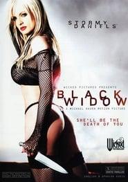 轻佻黑寡妇.Black Widow.2007