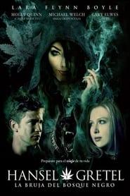 Hansel y Gretel: La bruja del Bosque Negro 2013