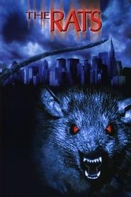 Ratten – Sie sind überall! (2002)