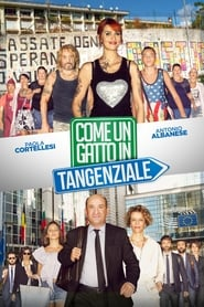 Watch Come un gatto in tangenziale on PirateStreaming Online