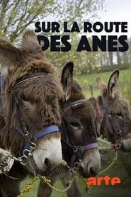 Sur la route des ânes