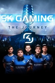 SK Gaming: The Journey